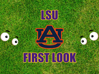 Eyes on Auburn logo