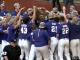 LSU Baseball Celebrates