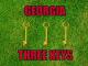 Georgia football Three keys