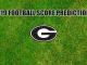 Georgia logo on grass