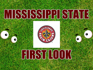 Eyes on Louisana logo