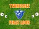 Eyes on Georgia State logo
