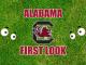 Eyes on South Carolina logo