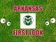Eyes on Colorado State logos