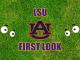 Eyes on Auburn logo