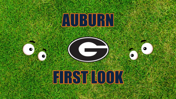 Eyes on Georgia logo