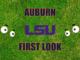 Auburn First-look LSU