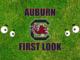 Auburn First look-South Carolina