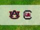 South Carolina Auburn Preview