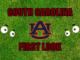 South Carolina First-look Auburn
