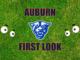 Auburn First look Georgia State