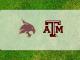 Texas A&M-Texas State logos