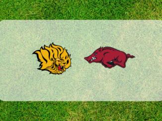 Arkansas-Arkansas Pine Bluff football preview